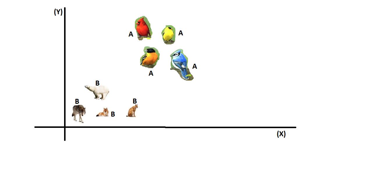 Figura 1: Classificação de animais